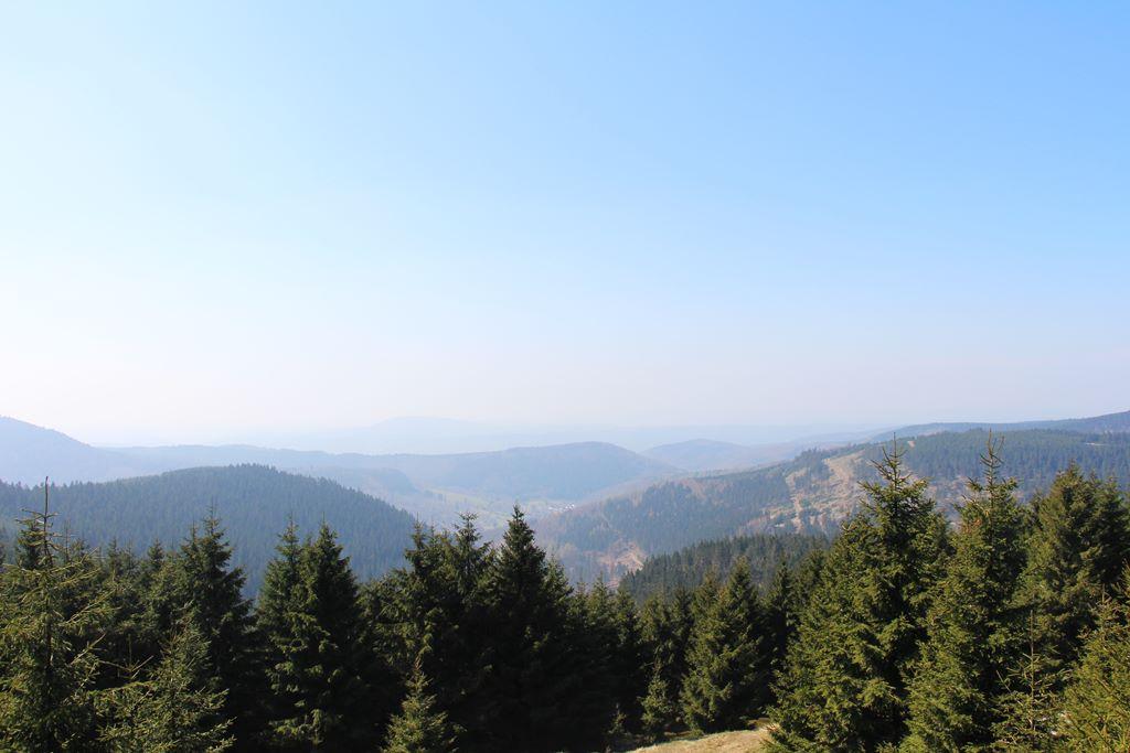 Rennsteig Thüringer Wald Aussicht