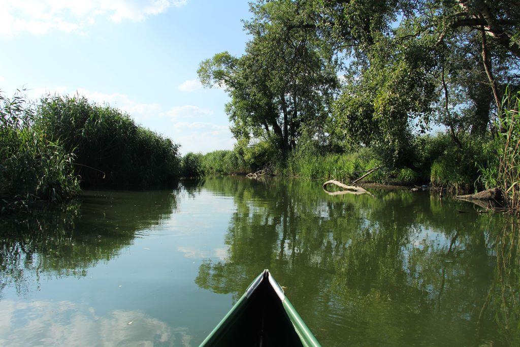 Kanu in Polen auf Obra