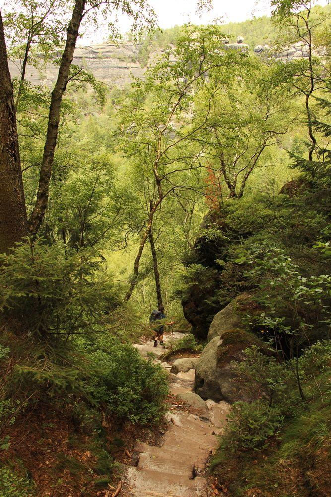 Hinab ins Tal auf dem Malerweg 1