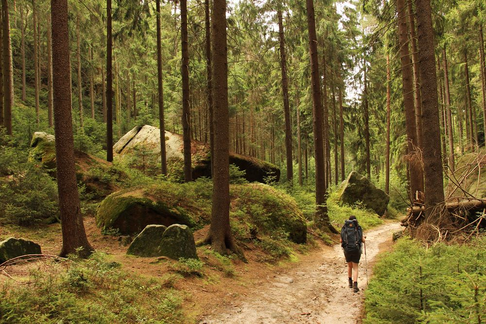 Felsen im Wald am Malerweg