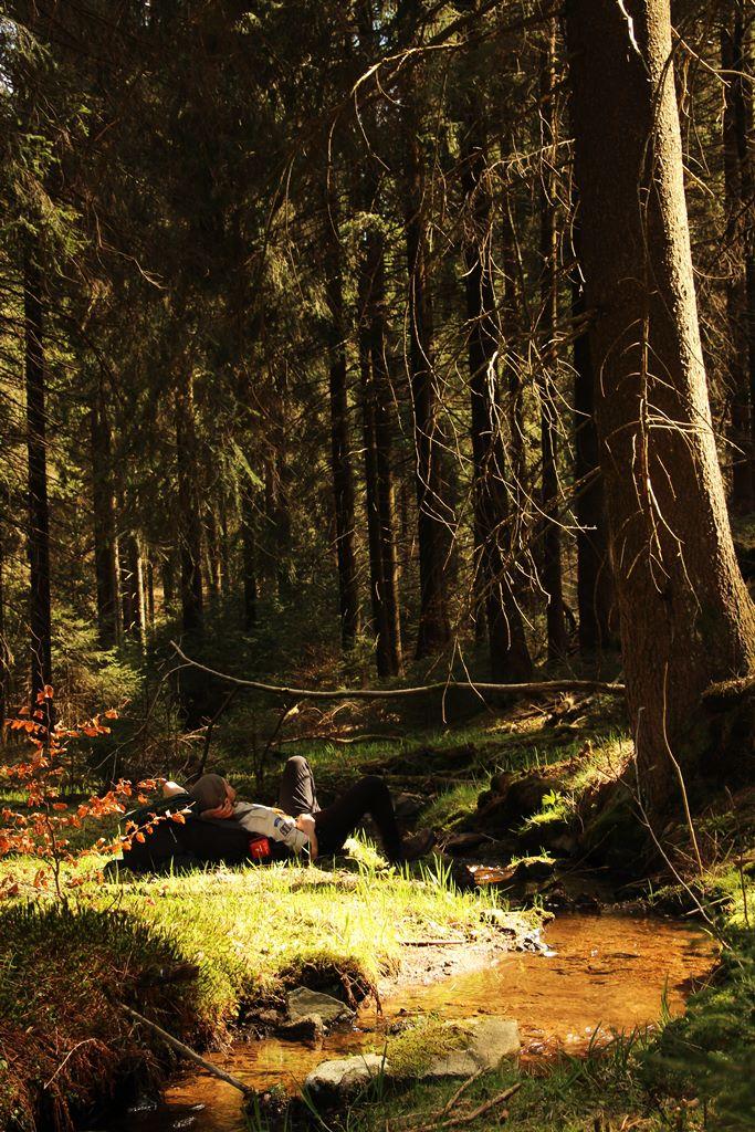 Frühling auf dem Rennsteig Thüringer Wald Hütte zu Hütte