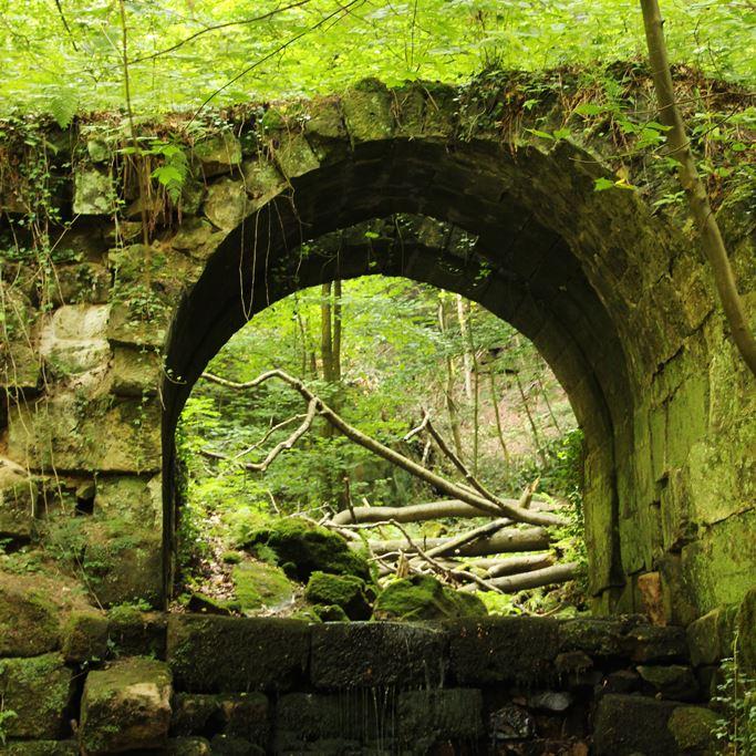 Ruine am Malerweg