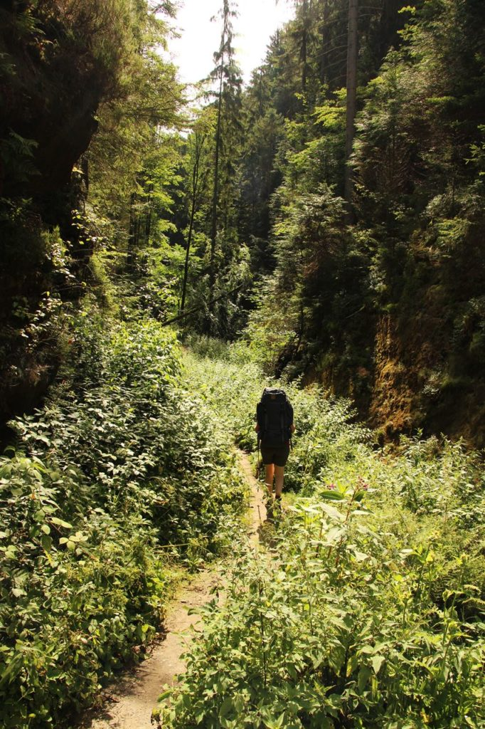 Schluchtenwald am Malerweg zelten