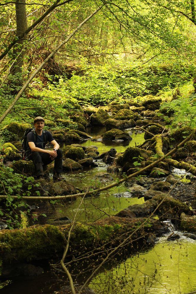 Am Schächerbach auf einem der Wanderwege im Vogelsberg